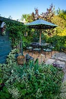 Seating area, with wooden garage, Clematis grows in reclaimed chimney pot, with variegated Euonymous - Spindle and sprays of Tiarella cordifolia