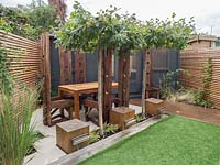 Contemporary small London garden with water feature, dining and entertaining area and office all brought together under the table top pleached trees