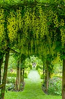 Cerney House Gardens, Gloucestershire, UK. ( Sir Michael and Lady Angus ) view through to sundial with Laburnum tunnel