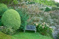 Mapperton Gardens, Dorset, UK ( Sandwich ) enchanting romantic summer garden, stone seat at base of wall with Erigeron, Roses