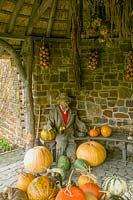 Rosemoor Garden, ( RHS ) Devon, UK. collected ornamental gourds and scarecrow in autumn time