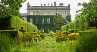 View down The Thyme Walk with Golden Yew Topiary, towards Highgrove House, June, 2019.
