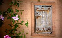 Wooden hatch door in orange painted wall, surrounded by flowering Clematis and Rose. The Carpet Garden, Highgrove, June, 2019.