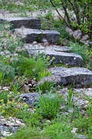 Stone steps through rockery or scree planted with Pulstilla vulgaris and other 