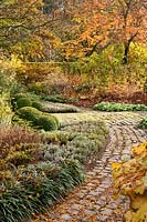 Curved pathway leading through autumn garden with mixed borders