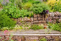 A recessed wooden bench set into a stone wall surrounded by self seeded Erigeron karvinskianus, campanula, sedum and Centranthus ruber, Church View, Appleby-in-Westmorland, Cumbria, UK.