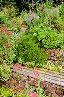 Recessed wooden bench set into a stone retaining wall surrounded by self-seeded