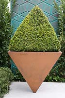Inverted steel topiary planter with Box and blue decorative screening -
