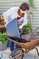 Woman using a trug to add compost to wheelbarrow.