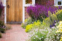 Brick path leading to front door, flower beds with Erigeron karvinskianus and Salvia nemorosa 'Amethyst' - Balkan Clary, Alchemilla mollis - Lady's Mantle AGM