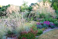 Colourful border includes Stipa gigantea Helictotrichon sempervirens Dianthus 'Devon Wizard' and Persicaria bistorta 'Superba', Bluebell Cottage Gardens, Cheshire UK