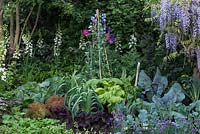 Welcome to Yorkshire Garden - Foxgloves, Sweet Peas, Wisteria, Chives, Leeks, Cabbages and Chard - Sponsor: Welcome to Yorkshire - RHS Chelsea Flower Show 2018