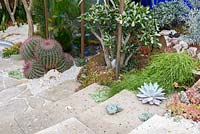 Stone steps and gravel with succulents, cacti and fish tank  - The Pearlfisher Garden - Sponsors: Pearlfisher, Nigel Colclought and Jason de Caires Taylor - RHS Chelsea Flower Show 2018
