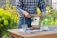 Man painting newly made bird box pale green