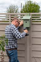 Man fixing painted bird box to fence with electric screwdriver
