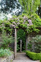 Gothic arched gateway and wall, with flowering Clematis 'Warwickshire Rose' above at Watcombe, Somerset, UK.