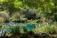 Blue lake with Lotus and other plants, HUALU Ermitage sur Loire, HUALU 