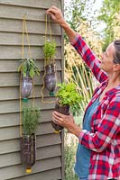 Hanging tiered plastic bottle herb planters to shed