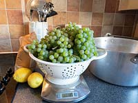 Still life with harvested grapes on scales, with lemons and jam pan.