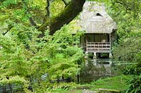 View of Japanese tea house, straddling the River Avon, amongst tall trees, ferns and other moisture loving plants. Heale House, Middle Woodford, Salisbury, Wilts, UK.
