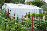 Greenhouse in vegetable patch with cane fruits in foreground.