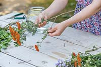 Woman pulling side branches of cut Achillea flowers prior to trying bouquet.