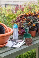 Tools for creating a painted pot bird bath