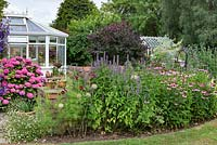 A conservatory surrounded by a flower bed of Cosmos, Agastache and Echinacea - coneflowers