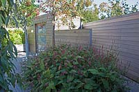 New wooden shed with Malus floribunda and Persicaria in the front.
