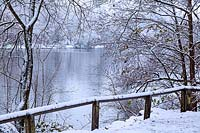 View of winter lake and snow laden trees. Black Park, Buckinghamshire, UK.
