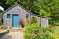 Shed with Echinacea, Hemerocallis and Clematis