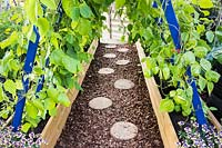 Path made from sliced logs between raised beds with runner beans. RHS Grow Your Own with The Raymond Blanc Gardening School, RHS Hampton Court Palace Flower Show, 2018.