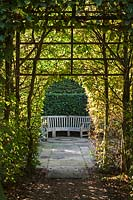 Seating area through Hornbeam arch - East Ruston Old Vicarage Gardens, Norfolk, UK.