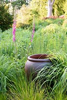 Pot in meadow with Deschampsia, Molinia and self seeded foxgloves, Gloucester, UK