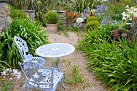 Gravel terrace with seating and agapanthus, phormiums and hydrangeas, Cornwall, UK
