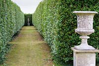 A classical urn frames the entrance to a grassy walk between tall Ligustrum - Privet - hedges leading towards a classical sculpture.