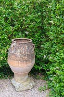 Terracotta urn at the junction of a privet hedge.