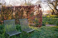 Pair of wooden garden seats in long grass with beech hedge, Stockbridge, Hampshire