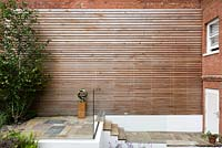 Wall with cedar cladding and Betula utilis var. jacquemontii - West Himalayan birch - with paved steps.