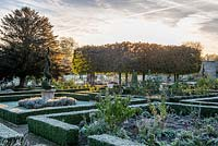 Sun rising over pleached Limes in the walled garden, with frosted box hedging and spiral topiary in terracotta containers.