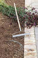 Tools and materials required for natural establishment of Verbena bonariensis in empty border.