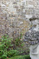 Agriframes plant support against wall in formal garden.