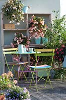 Balcony, with table and chairs and crate shelves displaying an assortment of flowering Begonias.