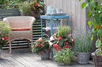 Modern balcony with wicker chair and potted plants.