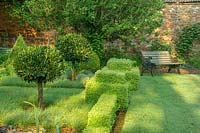 Clipped standards in formal parterre with Buxus hedging. Bickham House, Devon, UK.