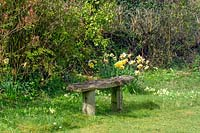Rustic bench at edge of garden, Elworthy Cottage, Somerset, UK