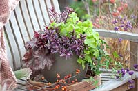 Autumnal pot with contrasting foliage plants, including Hebe and Heuchera.