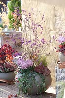 Callicarpa - Beautyberry - used as centrepiece in round container, with Heuchera, Chrysanthemum and Hedera - Ivy.
