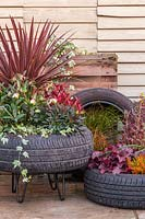 View of raised tyre planter, planted with autumnal plants.