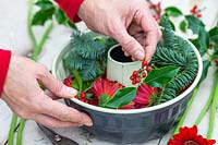 Woman adding Ilex - Holly - to bundt cake tin.